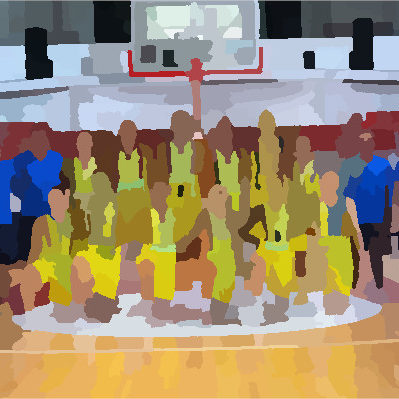 Fenerbahçe SK Kadın Basketbol
